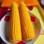 清水嫩玉米的做法